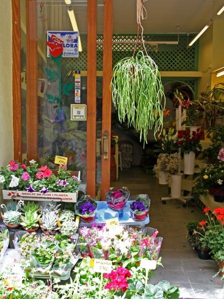 Floristeria Jardí: Foto, 2